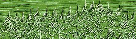 Waldstreifen1 grün